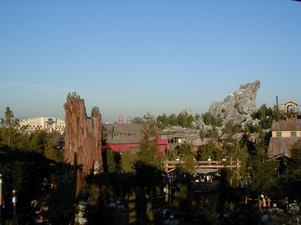 Grizzly Peak and Condor Flats from Redwood Creek Challenge Trail. If it wasn't closed for refurbishment, I'd take the same photo and you would notice how much taller the trees are.